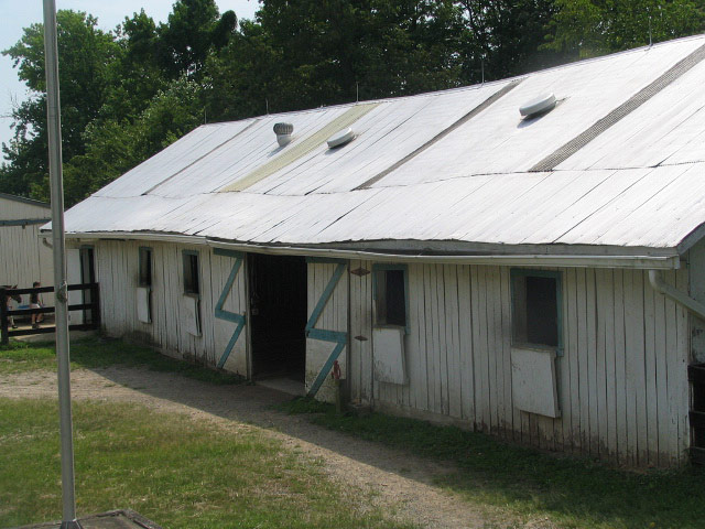 woodlawn-sale-barn