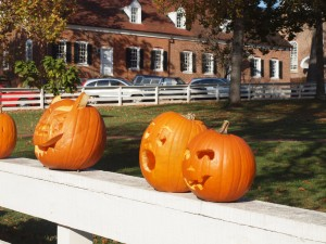 Setting up pumpkins in Old Salem's historic town square for the big Halloween pumpkin festival.