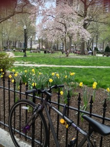 A walk around Rittenhouse Square in Philadelphia reveals a richness of vibrant commerce.