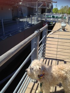 Kolby loved the Naval Park and its historic ships and submarine even more than the Bertoia fountain.
