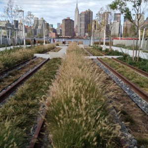 Rain gardens, park features and the waterfront frame the Empire State Building.