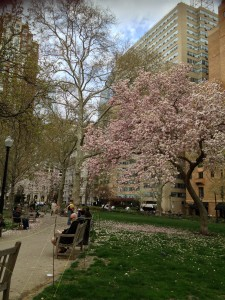 Philadelphia's Rittenhouse Square is the type of public space with low density that makes our cities so wonderful.  We need balance in our cities not just density.