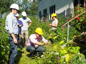 The sustainability team evaluating the building's foundation.